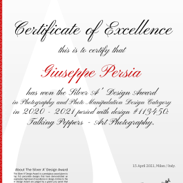113450_certificate_option2.png